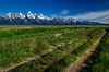 Grand Teton Lines (tuhindas1989) Tags: landscape nature mountain beautiful grandteton grandtetonmountain grandtetonnp grandtetonnationalpark wyoming travel travelphotography