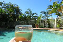 it's a tough life (Grenzeloos1) Tags: pool wine autumn brisbane 2018