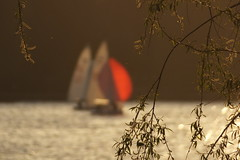 On a sunny day (Elbmaedchen) Tags: segelboot alster lichtstimmung hamburg sailing boat gegenlicht rot red segel