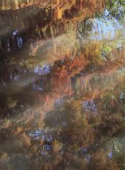 Watercolor (carlos_ar2000) Tags: abstracto abstract color colour reflejo reflected reflection distorsion distortion agua water arte art tigre buenosaires argentina