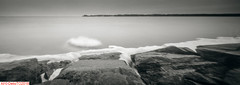 Not a sandy beach... (DelioTO) Tags: 4x5 beaches blackwhite canada d23 f175 fomapan100 lake landscape ontario pinhole rain trails winter
