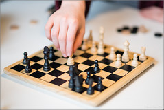 Things to do on a rainy day (mikeyp2000) Tags: chess board move strategy pieces game