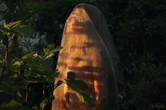 Nastya Day (RickB500) Tags: portrait veil outdoors rickb rickb500 nastya paloma dasha cute blonde nudeart cupa girl
