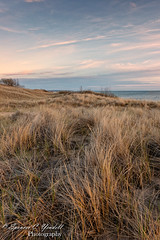 Lake Michigan Dunes (Spencerwhy) Tags: 2018 dunes landscape sunset d800 flickr ludington 1424mm michigan