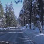 Yosemite Valley Drive thumbnail