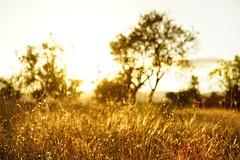 Dream on (Mario Ottaviani Photography) Tags: sony sonyalpha italy italia paesaggio landscape travel adventure nature scenic exploration view vista breathtaking tranquil tranquility serene serenity calm marioottaviani viaggio avventura natura esplorazione montagna mountain clouds nuvole cielo sky abruzzo capestrano dream sogno dreamon continuaasognare