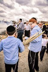 LDS_3022 (Baltimore Jewish Times) Tags: chometz chametz burning passover pesach pimlico baltimore orthodox judaism