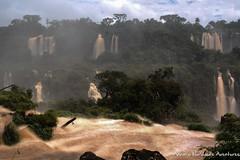 "The ""Devil's Throat"" at Iguazu Falls, as seen from the Brazilian side (adventurousness) Tags: devilsthroat gargantadeldiablo iguacufalls iguassufalls iguazufalls waterfalleffect argentina brasil brazil falls iguacu iguassu iguazu waterfall waterfalls"