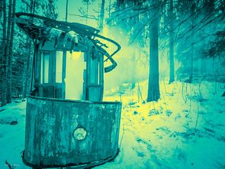 tram in the woods