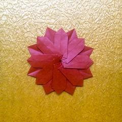 大波斯菊 (guangxu233) Tags: origami origamiart paper paperart paperfolding tomokofuse flower 手作り 折纸 折り紙作品 折り紙