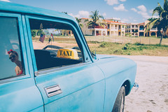 Trinidad (Juha Helosuo) Tags: playaancón sanctispiritus cuba casilda caribbean taxi driver car old travel photography c canon eos 7d mark ii trinidad trip roadtrip traveling traveller people reflection palm trees