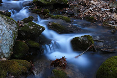 Moss and Water (EyeoftheImage) Tags: amazing beautiful bestshotoftheday breathtaking capturing capture colorful country discovery depthoffield dof exploring earth exquisite explore exposure forests forest fall falls globe greatphotographers greatnature landscape landscapes light longexposure longexposures longexposurewater water weather waterfall waterfalls newengland ngc nature