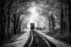 Westward Bound BW (VarietyHour) Tags: outdoor tracks train fuji xpro2 monochrome bw blackandwhite