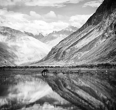 Nubra Valley reflections b&w (bag_lady) Tags: nubravalley ladakh india hunder valley reflections reflecting blackandwhite landscape himalayas