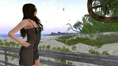Worlds Away (alexandriabrangwin) Tags: alexandriabrangwin secondlife 3d cgi computer graphics virtual world photography florida keys sim lighthouse beach morning eerie mist circling seagulls overhead overgrown tropical palm trees transparent latex dress string brief long hair woman standing looking sand surf waves water ocean