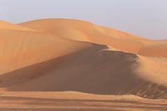 Liwa Desert / リワ砂漠 (travel collection) Tags: é¸æ arab uae abudhabi middleeast dune desert sand アブダビ アラブ 中東 砂漠 砂丘 砂