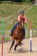JBC_5487.jpg (Jim Babbage) Tags: krahc horseshow appaloosa horses 2018 bethany