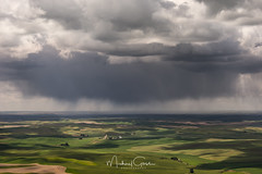 Scattered Showers In the Palouse (NikonDigifan) Tags: palouse steptoebutte landscape rural farming agriculture inlandnorthwest pacificnorthwest storm clouds nikond750 nikon28300 mikegassphotography