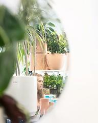 Cozy plant shop views. (The ZEN Succulent) Tags: the zen succulent terrarium instagram