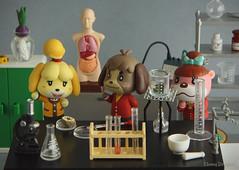 Science Class (Ebony Dragon) Tags: animal crossing amiibo nintendo rement science lab class