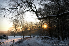 Beacon Hill (gdenscombe) Tags: leicestershire beaconhill woodhouseeaves landscape snow winter