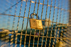 Focus Locked (stephenk1977) Tags: australia queensland qld brisbane kurilpabridge cbd nikon d3300 golden hour lock bokeh reverse globular mir1b lens vintage manual focus
