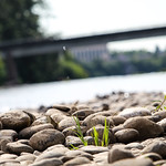 Willamette River thumbnail