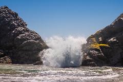 Harris Beach State Park-4404.jpg (marvhimmel) Tags: breakers oregoncoast general surf ocean rock wave sea