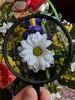 Asymmetry magnified (Oleg Vrabie) Tags: flower magnifyingglass flowers bouquet macro zoom