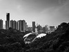 Hong Kong Stadium surrounded by jungle (Henrybakery) Tags: iphonegrapher architecture cameraphone iphone7plus iphone7 cityscape downtown cloudy clouds sky tree trees highrisebuilding skyscraper building black white whiteinblack blackandwhite bw jungle urbanjungle urban hongkongstadium