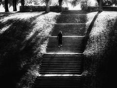 Up stairs (andersåkerblom) Tags: shadows sweden stockholm skogskyrkogården svartvitt svartvit schwarz noire walking woman upstairs stairs streetphotography streetphoto monochrome street blackandwhite bw bnw