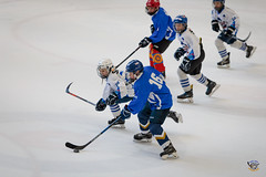 Bled 2018_6D__MG_0173_103 (icehockey.today) Tags: bled2018 bled radovljica slovenia si