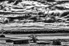 Westward B&W. (LDM707) Tags: 1200d ldm707 california sonomacounty santarosa bayarea canon1200d canonphotography teamcanon photography photographer amateurphotography landscape landscapephotography landscapehunter skyline clouds sky blackandwhite blackandwhitephotography contrast gameoftones instagood weather mood