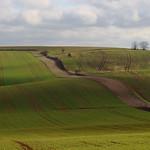 Moravian fields thumbnail