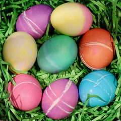Easter Eggs (Read2me) Tags: colorful eggs many easter pastel bright pree challengeclubwinner ge cye thechallengefactorywinner