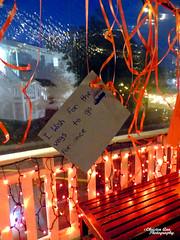 P1650090 (Christen Ann Photography) Tags: 2017 auckland christmas christmaslights christmaslights2017 december2017 lights motat motatevent museumoftransportandtechnology newzealand watermarked westernsprings