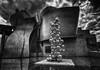 Bilbao - Vacanze 2017 (auredeso) Tags: bilbao spagna espana baschi paesi paesibaschi hdr tonemapping bn nikon d7100 tokina nikond7100 tokina1116 vacanze 2017 guggenheim bianco nero