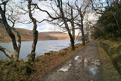 DSC02857 (margaret.metzler) Tags: ireland donegal countydonegal glenveagh glenveaghnationalpark nationalpark autumn 2017 path trail road lake lough loughbeagh hiking reflection