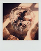 untitled (kaumpphoto) Tags: polaroid sx70 instant glass refraction light shadow marble shell seashell stilllife coral beige transparent