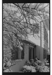 P61-2018-004 (lianefinch) Tags: argentique argentic analogique analog monochrome blackandwhite blackwhite bw noirblanc noiretblanc nb nature neige snow winter hiver white blanc noir sun soleil arbre tree graphic graphique house maison garden jardin