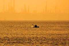 Sunset Solent Canoeist (fstop186) Tags: sunset solent canoeist sea splash haze mist fog motion action movement