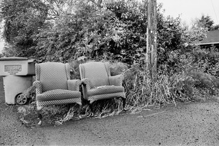 Chairs - Astoria, OR