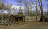Tiny House (.sanden.) Tags: taos newmexico unitedstates us sanden tree house forest wood building countryside hut nature rural outdoors shack wooden old cottage landscape outdoor woodland grass noperson logcabin ruralarea field standing treelog grazing shelter abandoned hay village area