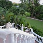 Banana Bank - Stairs to the Garden thumbnail