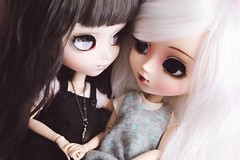 happy pride month! (hauntiing) Tags: pullip pullips doll dolls toy toys laura blanche pulliplaura pullipblanche pullipphotography pullipdoll pullipdolls toyphotography dollphotography