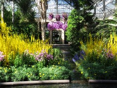 20180331 Longwood Gardens - in Explore (Dolores.G) Tags: day90365