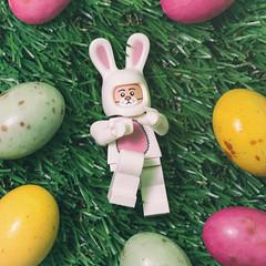 Easter Heaven (jezbags) Tags: lego easter bunny egg heaven legos toy toys macro macrophotography macrodreams macrolego canon canon80d 80d 100mm closeup upclose