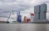 Erasmusbrug (Koen Adriaenssen) Tags: erasmusbrug rotterdam holland nederland water landscape buildings cityscape skyline bridge canon 1d iv sigma 35 14