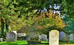 St John the Baptist, Ripe (grassrootsgroundswell) Tags: church churchyard englishparishchurch ripe sussex