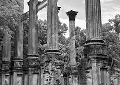 DMAFR Day 2 (16) (momentspause) Tags: mississippi roadtrip travel ruins canon5dmkiii canonef50mmf18 niftyfifty blackandwhite bw blackandwhitephotography column nikeffects